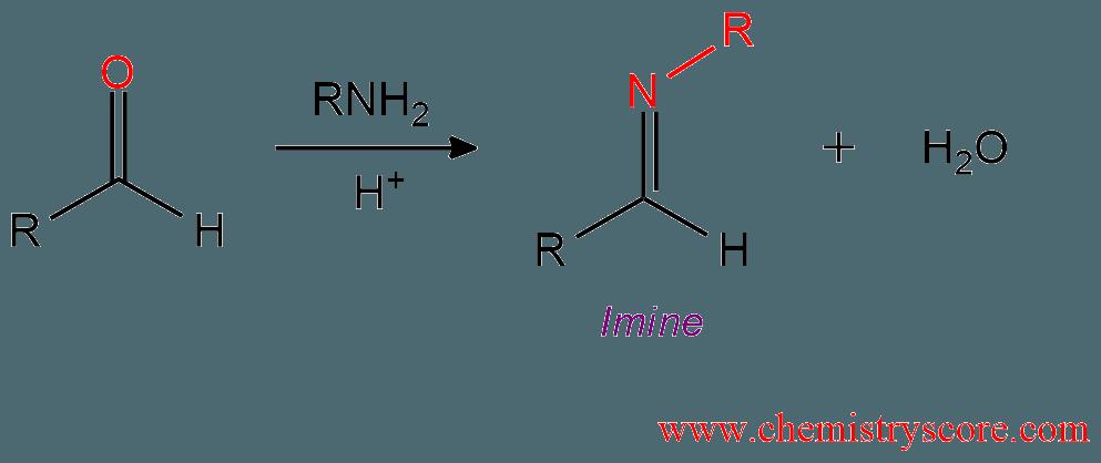 schiff base reaction mechanism pdf