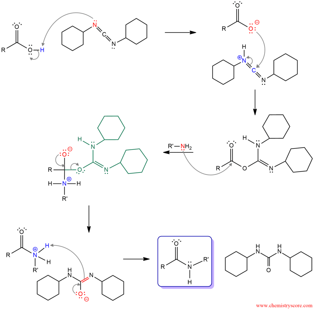 Amide Formation Using DCC - ChemistryScore