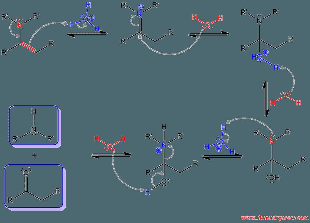Enamine Hydrolysis Chemistryscore