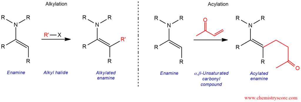 Stork Enamine Reaction - ChemistryScore