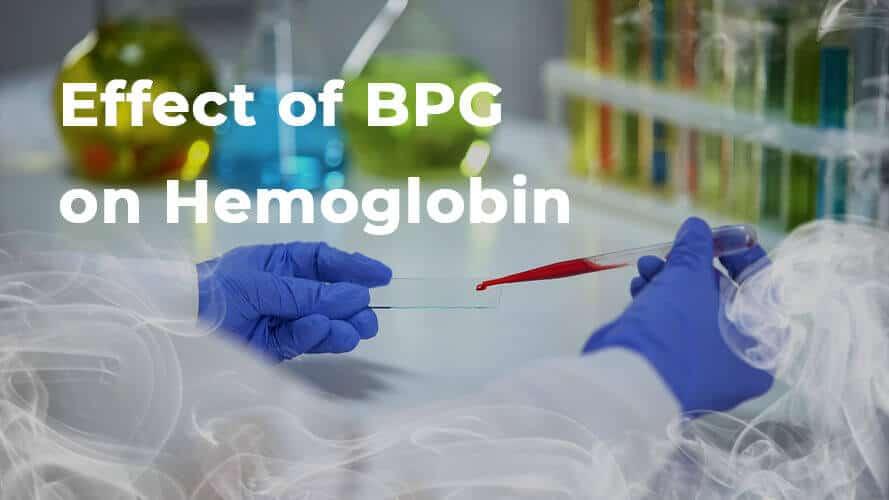 Effect of BPG on Hemoglobin